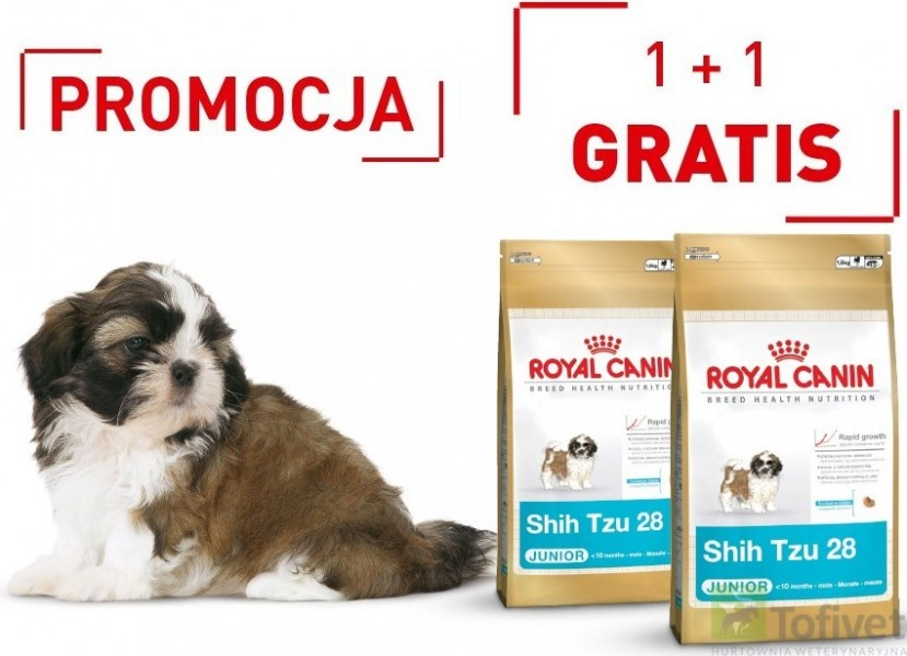 royal canin shih tzu junior wyprawka karma najtaniej sklep zoologiczny warszawa tofivet. Black Bedroom Furniture Sets. Home Design Ideas