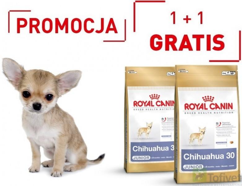 royal canin chihuahua junior karma najtaniej sklep zoologiczny warszawa tofivet. Black Bedroom Furniture Sets. Home Design Ideas