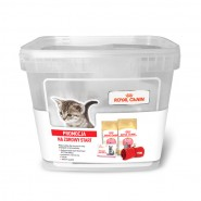 ROYAL CANIN British Shorthair Kitten 2x400g WYPRAWKA