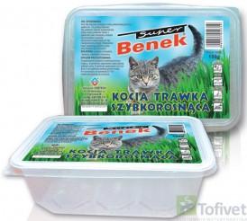 green barley plus farmacia