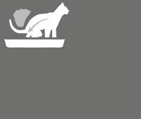Karma ROYAL CANIN dla kota tanio