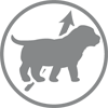 Karma ROYAL CANIN dla psa tanio